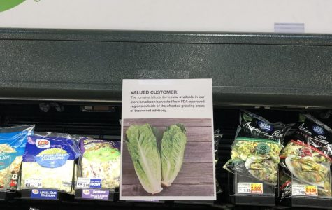 A Recent Lettuce Outbreak Sickens Many