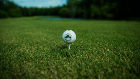 A golf ball sitting on a tee.