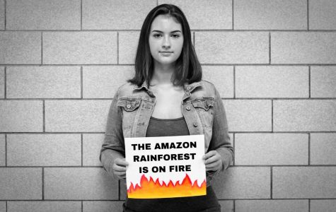 The Amazon Rainforest Is On Fire