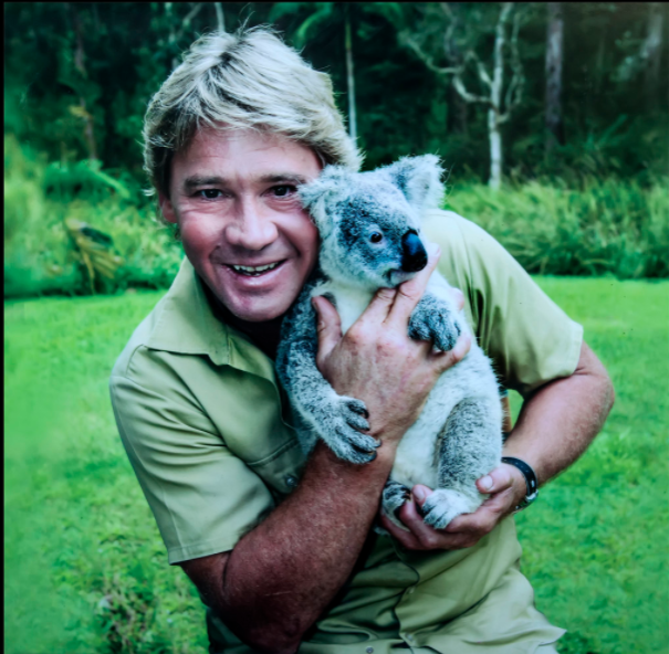 Holding a koala, Steve Irwin at the Australia Zoo.